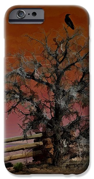 Creepy iPhone Cases - Dead Tree Sunset W5266 iPhone Case by Wes and Dotty Weber