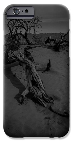 Sand Dunes Pyrography iPhone Cases - Dead Trees on the Dunes BW iPhone Case by Rick Strobaugh
