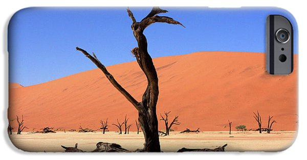 Dry Lake Photographs iPhone Cases - Dead Vlei Tree  iPhone Case by Aidan Moran