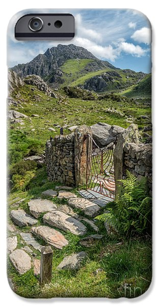 July Digital iPhone Cases - Decorative Iron Gate  iPhone Case by Adrian Evans