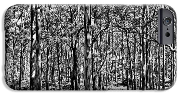 Nature Scene Photographs iPhone Cases - Deep Forest BW iPhone Case by Az Jackson