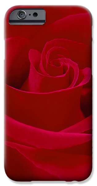 Deep Red Rose iPhone Case by Mike McGlothlen