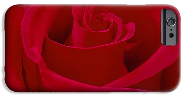 """""""square """" Digital iPhone Cases - Deep Red Rose iPhone Case by Mike McGlothlen"""