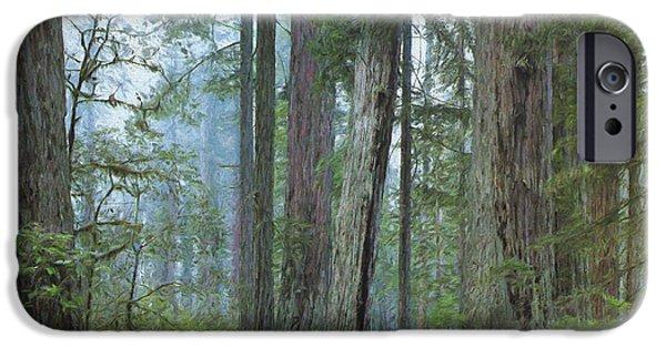 Fog Mist iPhone Cases - Deep Woods iPhone Case by Steve Bailey