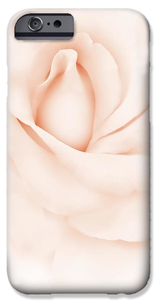 Peach Rose iPhone Cases - Delicate Peach Rose Flower iPhone Case by Jennie Marie Schell