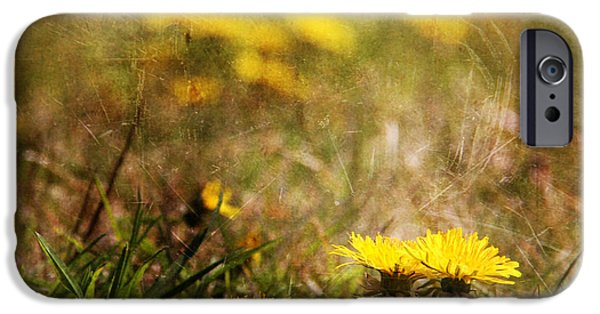 Yellow Reliefs iPhone Cases - Dent de Lion iPhone Case by Dominic Moriarty