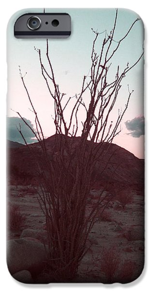 Field. Cloud iPhone Cases - Desert Plant and Sunset iPhone Case by Naxart Studio