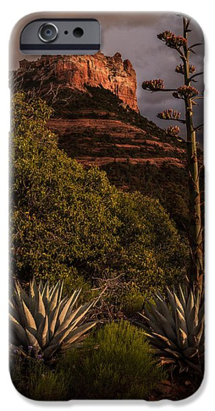 Sedona Pyrography iPhone Cases - Desert Plants iPhone Case by Rick Strobaugh
