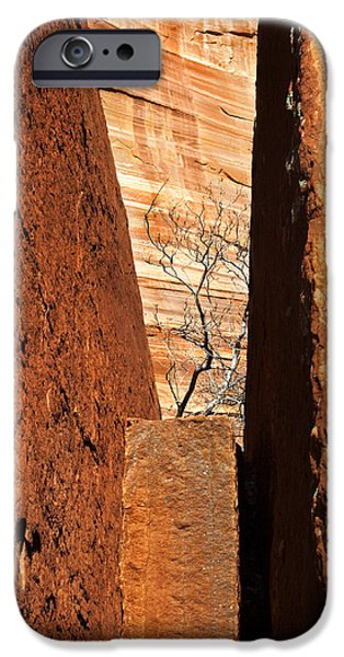 Vise iPhone Cases - Desert Vise iPhone Case by Mike  Dawson