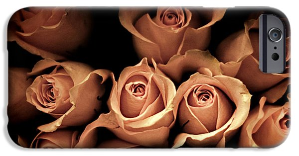 Pink Roses iPhone Cases - Desire iPhone Case by Amy Tyler