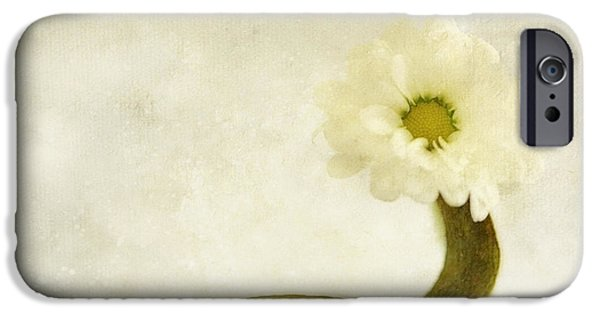 Blossom iPhone Cases - Dg iPhone Case by SK Pfphotography