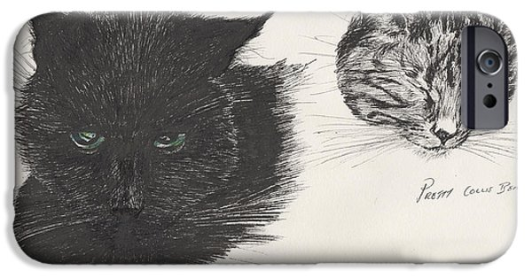Cat Prints Drawings iPhone Cases - Diddybigface and colliebeastie iPhone Case by Vincent Alexander Booth