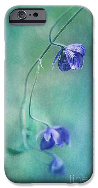 Close Up Floral iPhone Cases - Different Perspective iPhone Case by Priska Wettstein