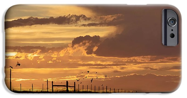 Crows iPhone Cases - Dinner Before Dark On The Mesa iPhone Case by Janice Rae Pariza