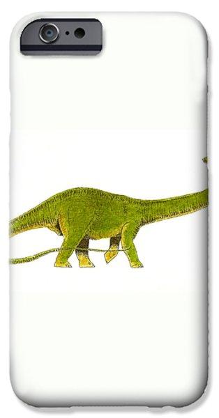Diplodocus iPhone Case by Michael Vigliotti