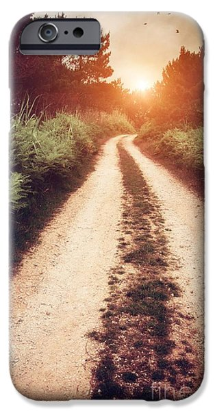 Pathway Photographs iPhone Cases - Dirt Trail iPhone Case by Carlos Caetano