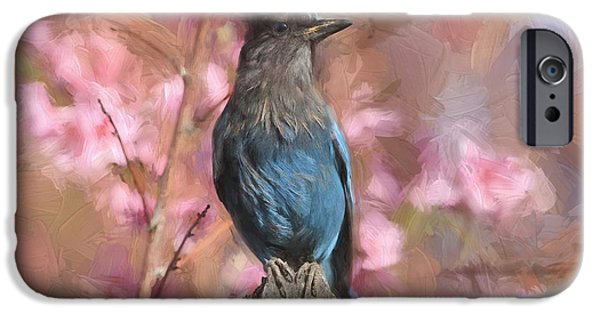 Flora iPhone Cases - Dirty Bird - Stellers Jay iPhone Case by Donna Kennedy