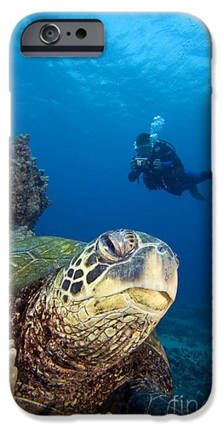 Free-diver iPhone Cases - Diver And Green Sea Turtl iPhone Case by Dave Fleetham - Printscapes