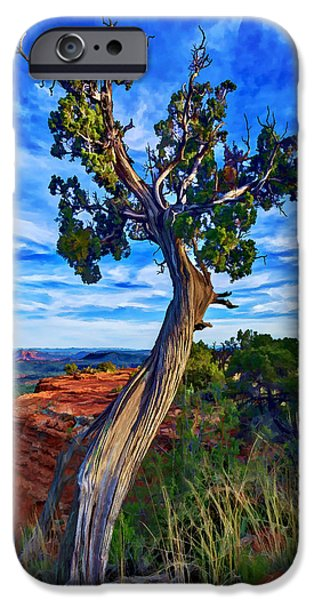 Recently Sold -  - Sedona iPhone Cases - Doe Mountain Juniper iPhone Case by Bill Caldwell -        ABeautifulSky Photography
