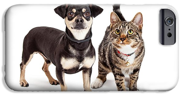 Domestic Short Hair Cat iPhone Cases - Dog and Cat Standing Looking Up Together iPhone Case by Susan  Schmitz