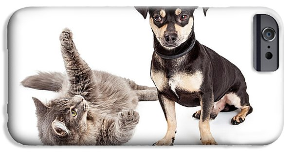 Action Shot iPhone Cases - Dog Annoyed With Playful Cat iPhone Case by Susan  Schmitz