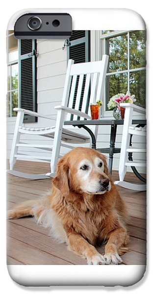 Dog days of summer iPhone Case by Toni Hopper