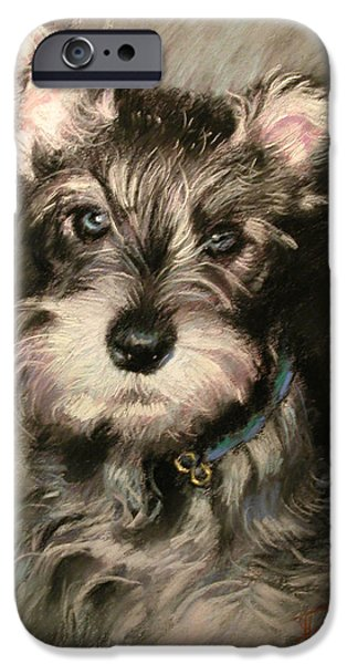 Dog Portraits iPhone Cases - Dog in Blue Collar iPhone Case by Ylli Haruni