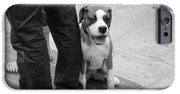 Boxer Digital Art iPhone Cases - Dog On A Leash iPhone Case by Venus