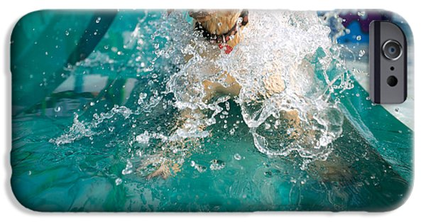 Dog Close-up iPhone Cases - Dog Splashing In Water iPhone Case by Gillham Studios