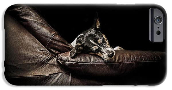 Animals Photographs iPhone Cases - Dog tired iPhone Case by Paul Neville