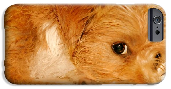 Puppy Digital Art iPhone Cases - Doleful Red iPhone Case by Wendy Martinez