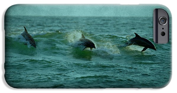 Panama City Beach Photographs iPhone Cases - Dolphins iPhone Case by Sandy Keeton