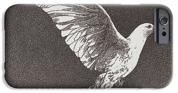 Earth Tones Drawings iPhone Cases - Dove Drawing iPhone Case by William Beauchamp