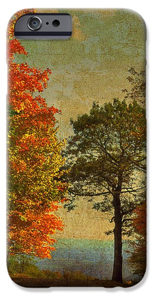 Down the Mountain iPhone Case by Lois Bryan