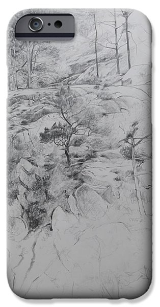 Flora Drawings iPhone Cases - Drawing by Ogwen. iPhone Case by Harry Robertson