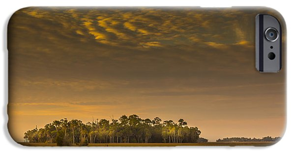 Pines iPhone Cases - Dream Land iPhone Case by Marvin Spates