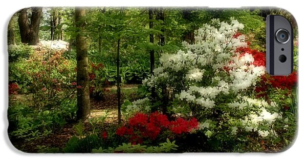 Indiana Springs iPhone Cases - Dreaming of Spring iPhone Case by Sandy Keeton