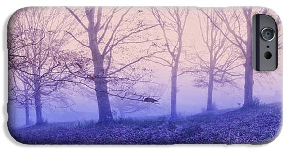 Mist iPhone Cases - Dreams in the Mist iPhone Case by Debra and Dave Vanderlaan