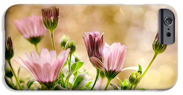 Floral Photographs iPhone Cases - Dreams iPhone Case by SK Pfphotography
