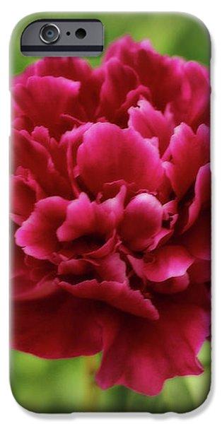Dreamy Peony iPhone Case by Sandy Keeton