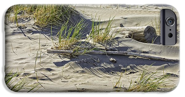 Sand Dunes iPhone Cases - Driftwood and Beach Grass Popham Beach Maine iPhone Case by Keith Webber Jr
