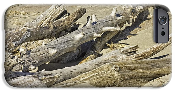Cracks Digital Art iPhone Cases - Driftwood and sand on Popham Beach on the Coast of Maine iPhone Case by Keith Webber Jr