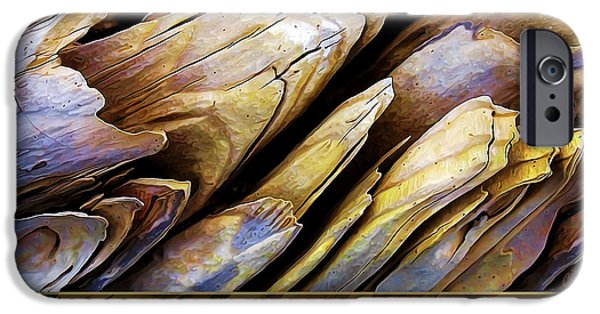 Wood Grain iPhone Cases - Driftwood Edges iPhone Case by Bill Caldwell -        ABeautifulSky Photography