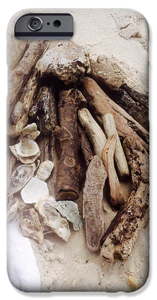 Finds A Way iPhone Cases - Driftwood found  iPhone Case by Michelle Murphy