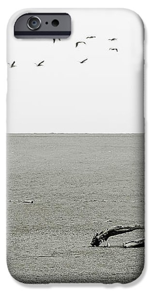 Driftwood Log and Birds - A Gray Day On The Beach iPhone Case by Christine Till