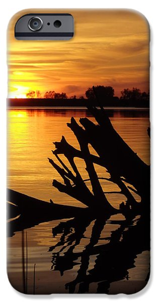 Rural iPhone Cases - Driftwood Silhouette iPhone Case by James Peterson