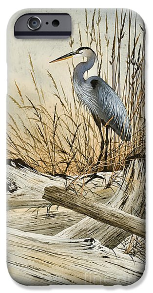 Heron Paintings iPhone Cases - Driftwood Splendor iPhone Case by James Williamson
