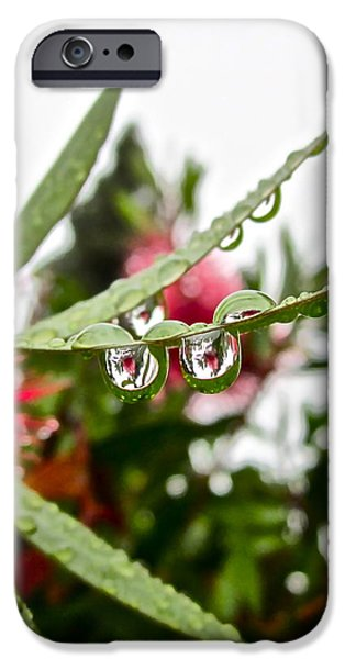 Drip and Drop iPhone Case by Gwyn Newcombe