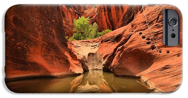 Red Cliffs iPhone Cases - Dry Fall Reflections iPhone Case by Adam Jewell