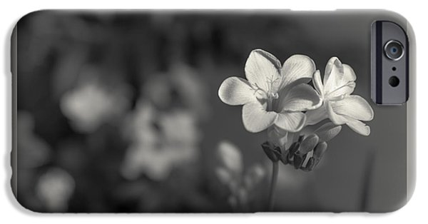Close Up Floral iPhone Cases - Dual display iPhone Case by Chris Fletcher